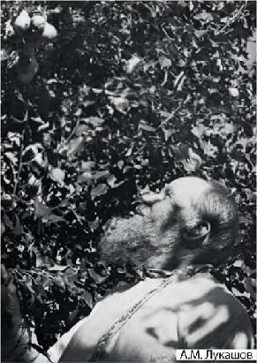 А. М. Лукашов